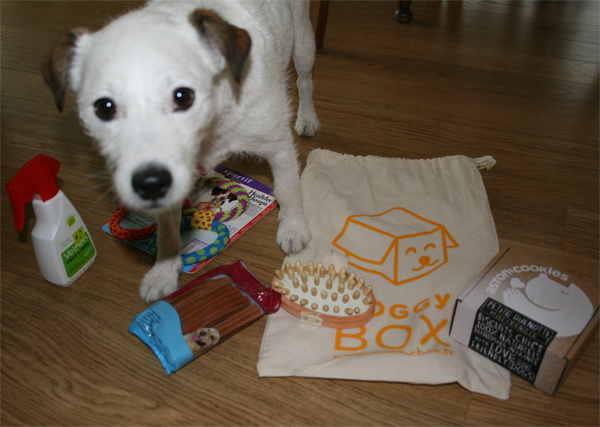 Dolly surkiffe sa DoggyBox - PouletteBlog